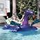 Image 8: Disclosure swimming pool